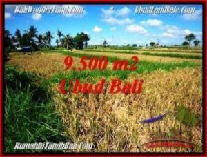 TANAH DIJUAL di UBUD BALI 9,500 m2 di Sentral Ubud