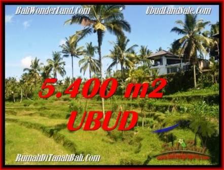 TANAH MURAH JUAL UBUD 54 Are View Sawah dan sungai lingkungan Villa