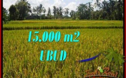 TANAH DIJUAL MURAH di UBUD 15,000 m2 di Ubud Tegalalang
