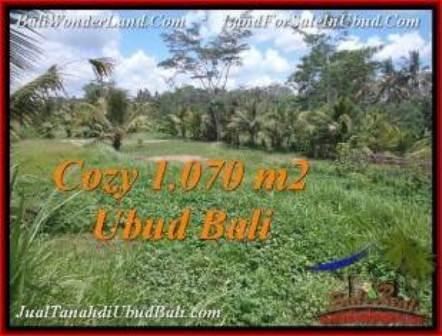 TANAH MURAH JUAL di UBUD BALI 1,070 m2 View Sawah dan kebun