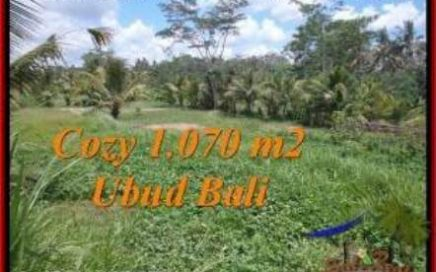 TANAH di UBUD BALI DIJUAL MURAH 10.7 Are di Sentral Ubud