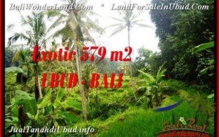 TANAH DIJUAL MURAH di UBUD Untuk INVESTASI TJUB538