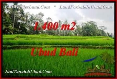 TANAH di UBUD BALI DIJUAL MURAH Untuk INVESTASI TJUB539