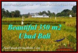 JUAL TANAH MURAH di UBUD Untuk INVESTASI TJUB540