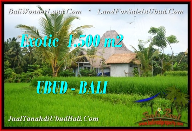 TANAH MURAH di UBUD JUAL 1,500 m2 View Sawah, link villa