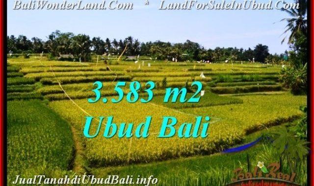 JUAL TANAH MURAH di UBUD 3,583 m2 di Ubud Pejeng