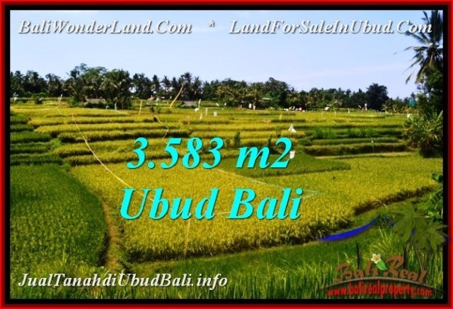 DIJUAL MURAH TANAH di UBUD BALI 35.83 Are di Ubud Pejeng