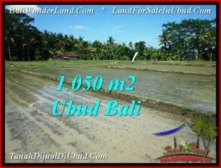 JUAL TANAH MURAH di UBUD 1,050 m2  View Sawah, link. villa