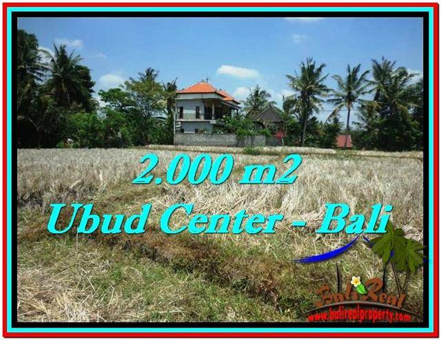 DIJUAL TANAH di UBUD 2,000 m2 di Sentral Ubud
