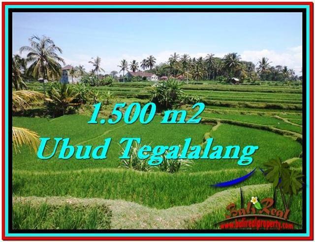 TANAH di UBUD JUAL MURAH 1,500 m2  View Sawah link Villa