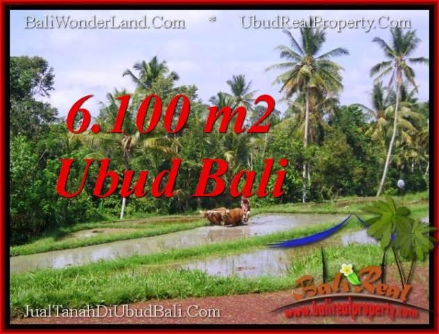 JUAL MURAH TANAH di UBUD BALI 61 Are View Sawah lingkungan villa