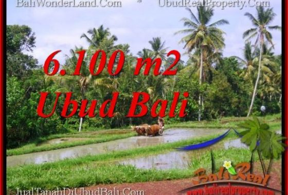 DIJUAL TANAH di UBUD 6,100 m2 di Ubud Tegalalang