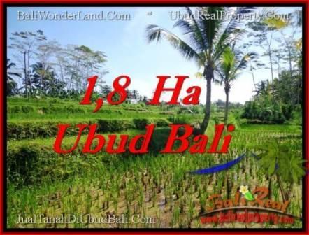 TANAH di UBUD BALI DIJUAL MURAH 160 Are di Ubud Payangan