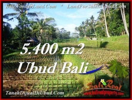 TANAH DIJUAL MURAH di UBUD 5,400 m2 di Ubud Payangan
