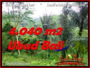 TANAH MURAH JUAL   UBUD 4,040 m2  View Sungai dan Hutan