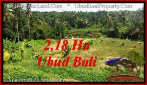 TANAH MURAH DIJUAL di UBUD BALI TJUB546