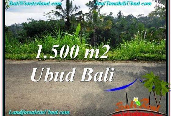 JUAL MURAH TANAH di UBUD BALI 15 Are View Kebun dan Tebing
