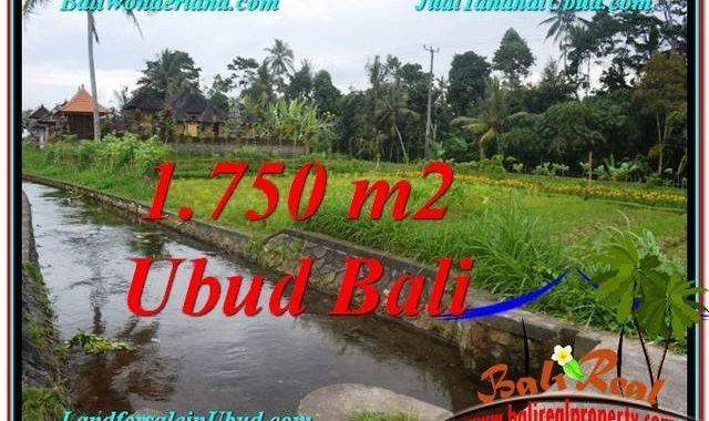 JUAL TANAH MURAH di UBUD BALI 715 m2 di Ubud Tampak Siring