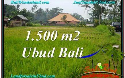 TANAH di UBUD BALI DIJUAL MURAH TJUB558