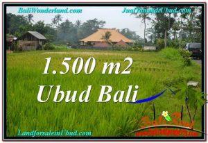 TANAH MURAH di UBUD 1,500 m2 di Ubud Tampak Siring