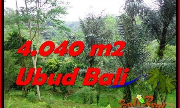 DIJUAL TANAH di UBUD 4,040 m2 di Ubud Tegalalang