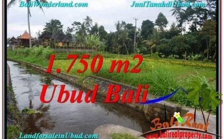 JUAL TANAH di UBUD BALI 7.15 Are View Sawah dan sungai