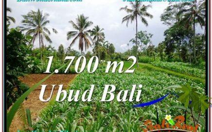 JUAL TANAH MURAH di UBUD 1,700 m2 di Ubud Payangan