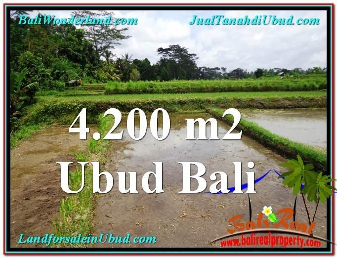 JUAL TANAH MURAH di UBUD 4,200 m2 di Ubud Tampak Siring
