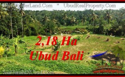 JUAL TANAH di UBUD BALI 21,800 m2 di Sentral Ubud