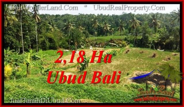 TANAH MURAH  di UBUD BALI DIJUAL 21,800 m2  View Sawah dan sungai ayung, link. villa