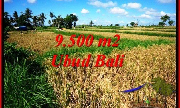 TANAH MURAH di UBUD 95 Are di Sentral Ubud