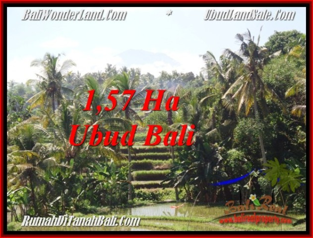 TANAH di UBUD BALI DIJUAL MURAH 15,700 m2  View Sawah, gunung dan sungai