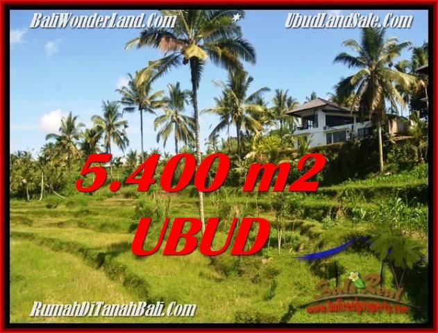 TANAH MURAH JUAL   UBUD 5,400 m2  View Sawah dan sungai lingkungan Villa