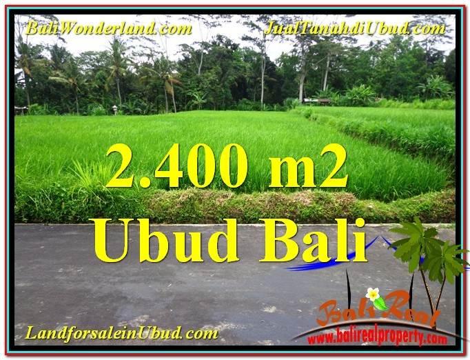 TANAH MURAH DIJUAL di UBUD BALI Untuk INVESTASI TJUB563