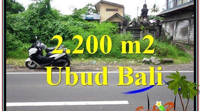 JUAL TANAH MURAH di UBUD 2,200 m2 Pinggir Jalan Raya