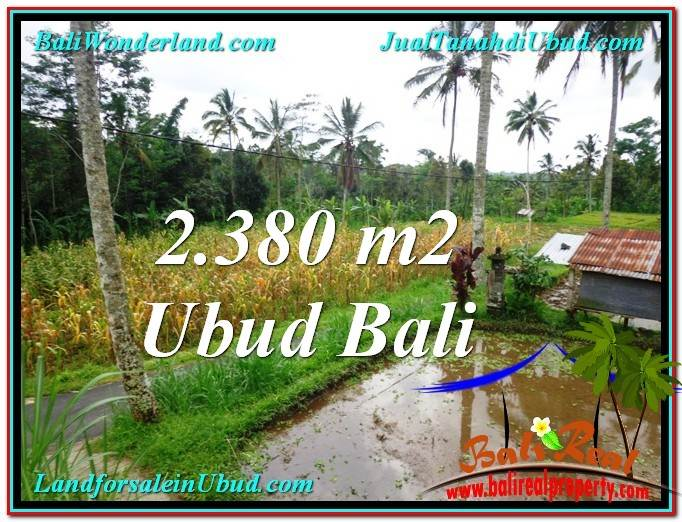 JUAL MURAH TANAH di UBUD BALI 2,380 m2 View kebun dan sawah