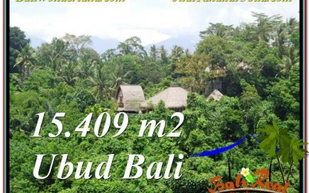 TANAH MURAH di UBUD BALI 154.9 Are View Tebing dan Sungai