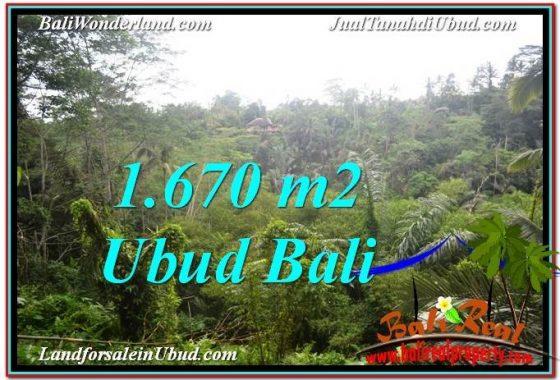 JUAL MURAH TANAH di UBUD BALI 1,670 m2 View Tebing