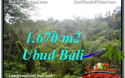 TANAH di UBUD JUAL MURAH 16.7 Are View Tebing