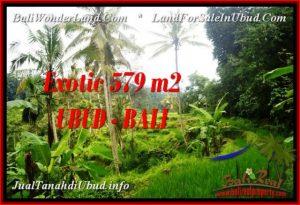 JUAL MURAH TANAH di UBUD BALI 579 m2  View Sawah dan sungai