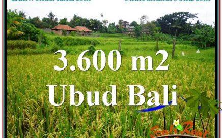 JUAL TANAH di UBUD 36 Are View sawah link Villa dan Restorant