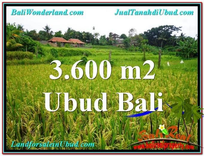 TANAH DIJUAL MURAH di UBUD 36 Are di Sentral Ubud