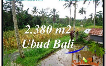 INVESTASI PROPERTI, DIJUAL MURAH TANAH di UBUD BALI TJUB567