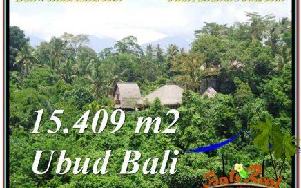 JUAL TANAH MURAH di UBUD BALI 15,490 m2 View Tebing dan Sungai