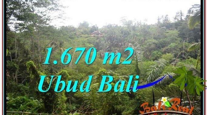 INVESTASI PROPERTI, DIJUAL MURAH TANAH di UBUD BALI TJUB569