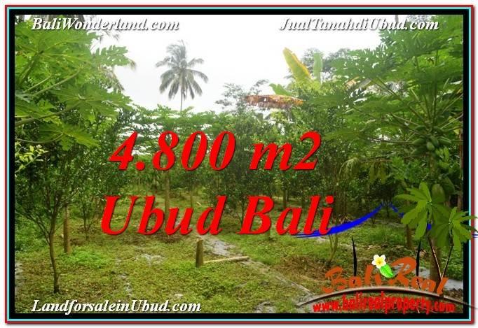 JUAL MURAH TANAH di UBUD BALI 4,800 m2  View Kebun dan Pangkung