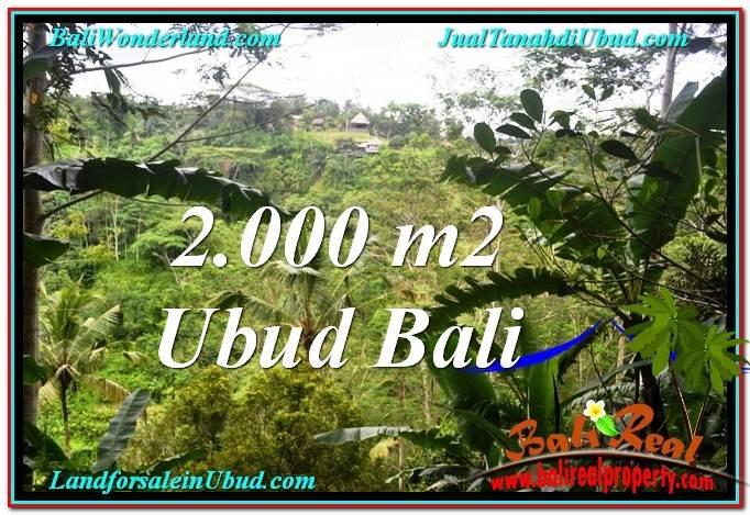 JUAL MURAH TANAH di UBUD BALI 2,000 m2  View Tebing dan Sungai