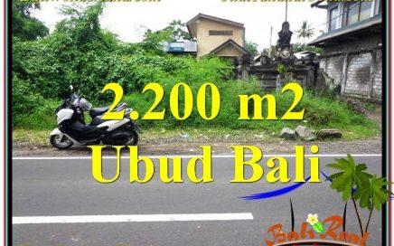 TANAH MURAH di UBUD BALI DIJUAL 22 Are Pinggir Jalan Raya