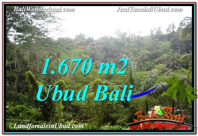 JUAL TANAH di UBUD BALI 1,670 m2  View Tebing