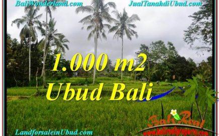 DIJUAL TANAH di UBUD BALI Untuk INVESTASI TJUB570